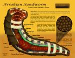 Anatomia dei vermi della sabbia di Arrakis, noto anche come Dune