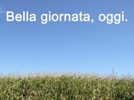 corn_bellagiornata